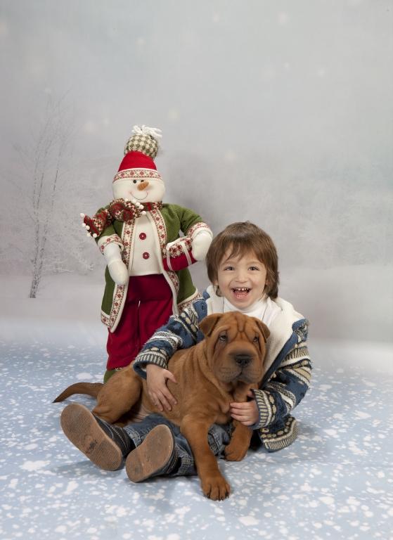 Fotografía de niños (felicitación de Navidad con mascota)